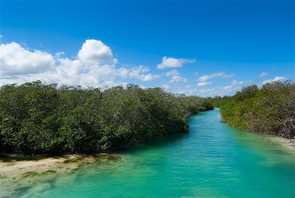 clients Nuevo Mundo en voyage sur mesure au Mexique à Sian Ka'an et sur les plages de Holbox
