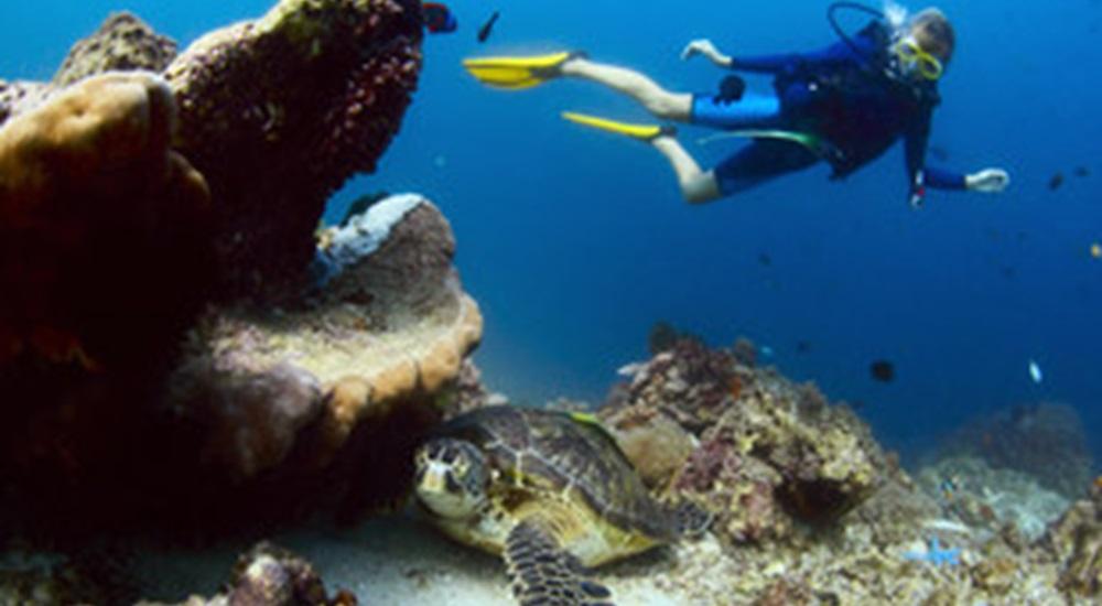plonger au Mexique