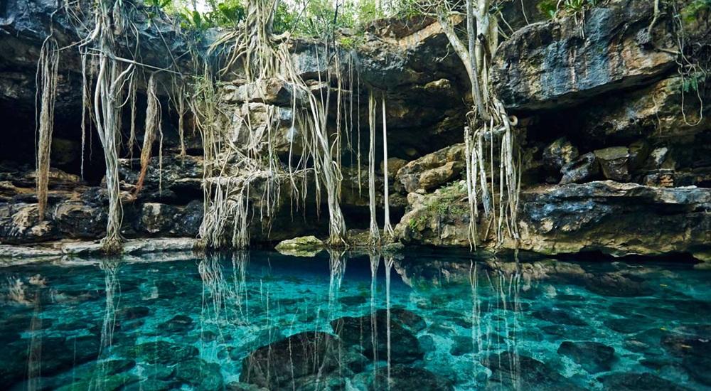 nager en cenote en circuit au Yucatan