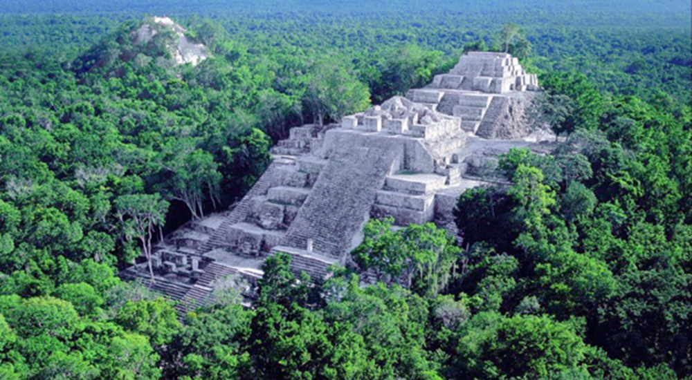 explorer calakmul et les singes avec des enfants