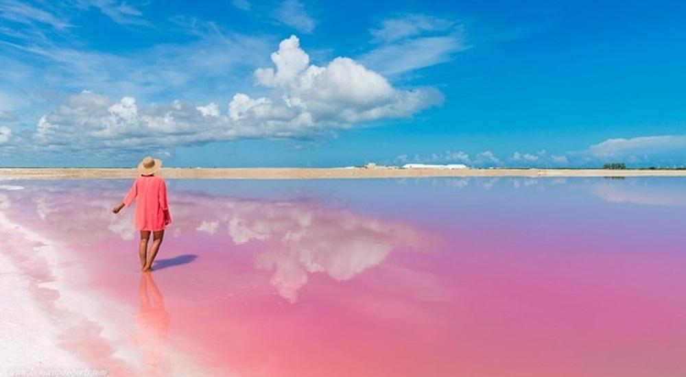 aller découvrir les lacs roses avec sa famille au Mexique est une expérience unique pendant laquelle il est possible de voir des crocodiles et plus de 300 espèces d'oiseaux!