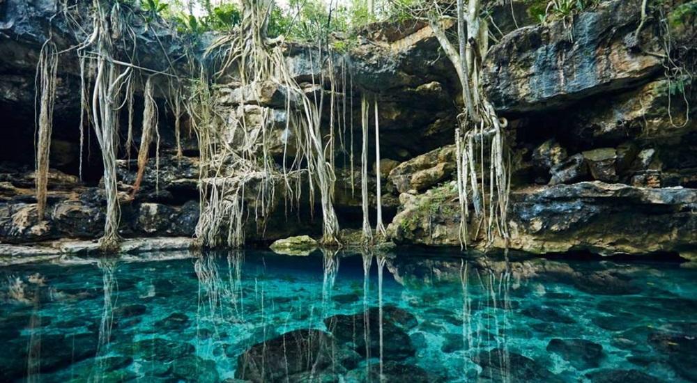 baignade en cenote pendant une lune de miel au Mexique