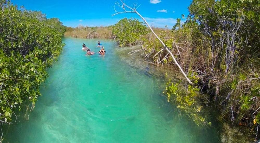 nager a sian kaan dans le yucatan