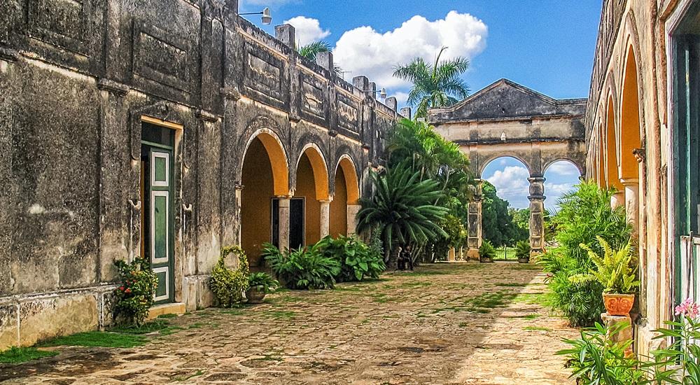 apprendre la culture du sisal pendant un voyage au Yucatan