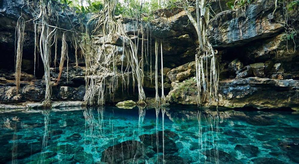 profiter d'une baignade dans l'un des plus beaux cenotes du Mexique
