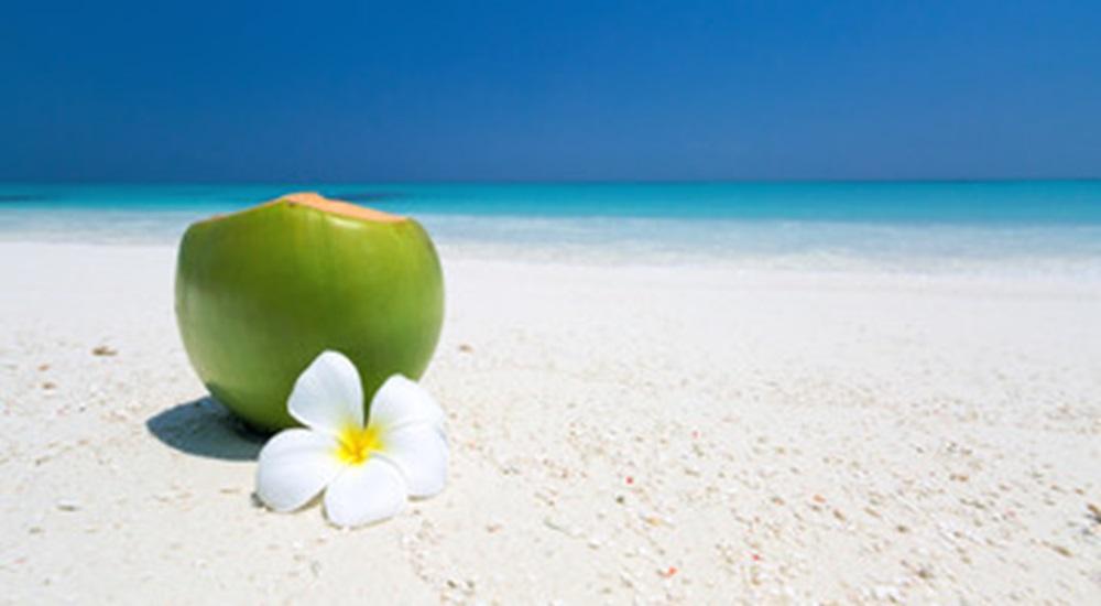 noix de coco sur la plage