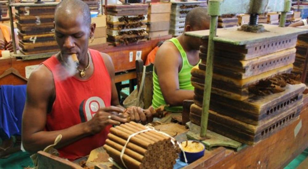 usine de fabrication de cigares a cuba