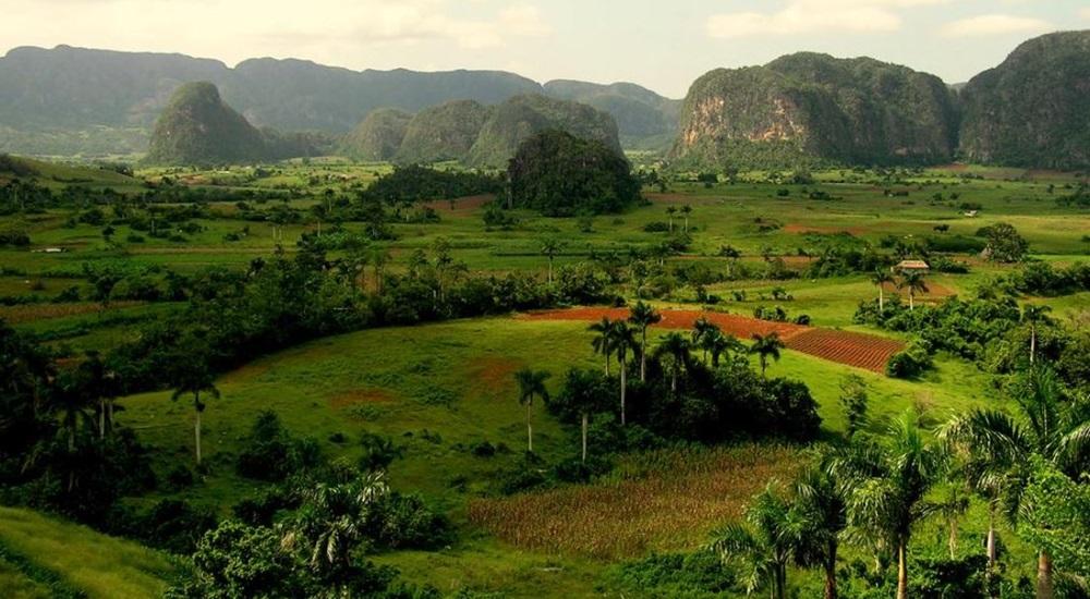 paysages luxuriants de vinales a cuba