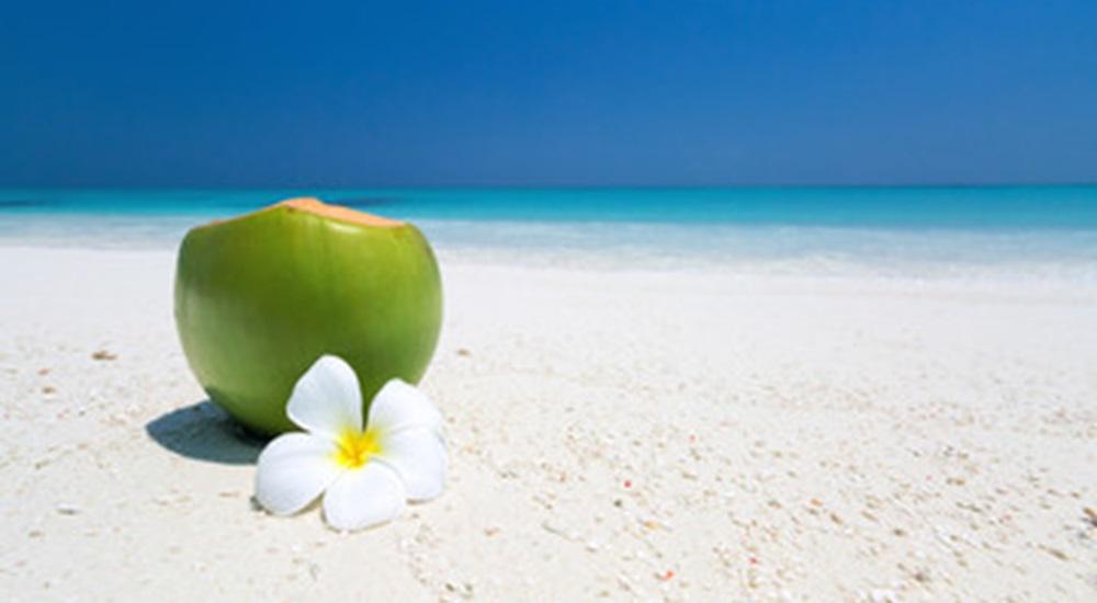 noix de coco sur la plage a varadero