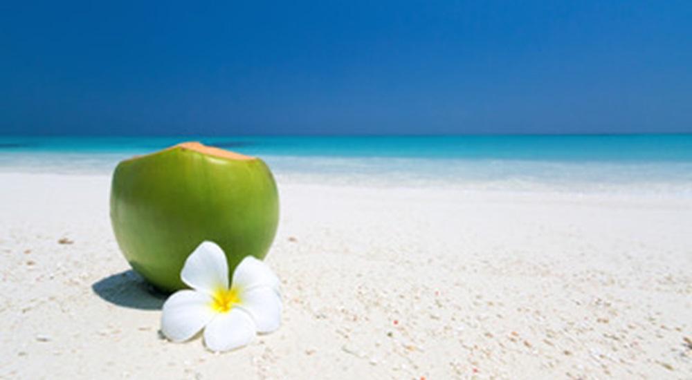 noix de coco sur la plage au Mexique